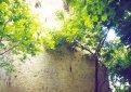 Крепостные стены Катех